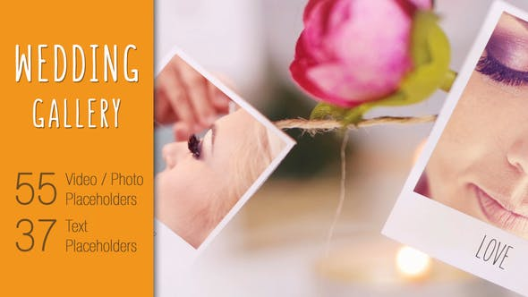 Videohive Wedding 20678642
