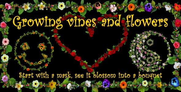 Videohive Growing Vines and Flowers 19355384