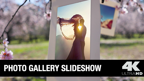 Videohive Photo Gallery 15617604