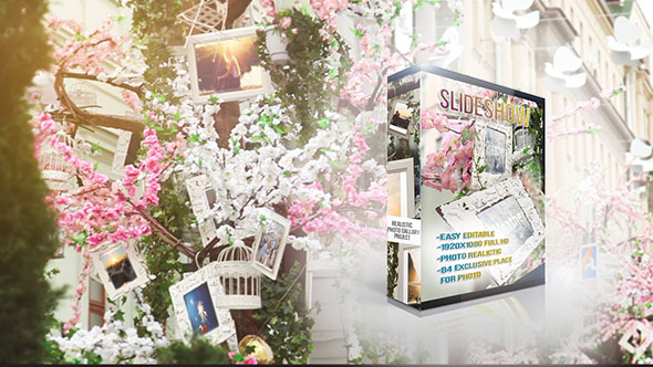 Videohive Photo Gallery Flowers and Sunny 16245646