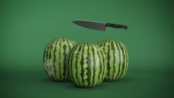Videohive Watermelon Logo Reveal 22881389