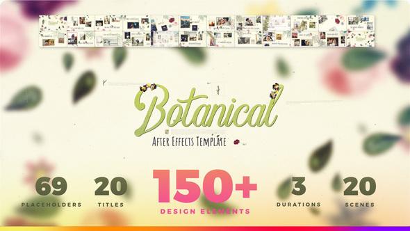 Videohive Botanical Slideshow - Wedding Love Story Family Album 22525749