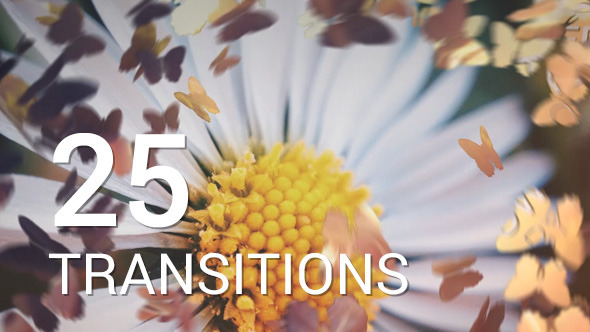 Videohive Butterflies Transitions 12016750