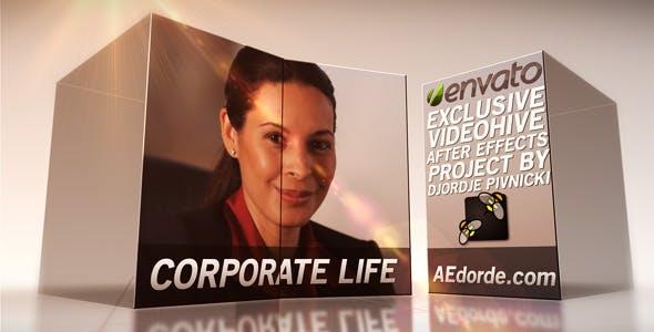 Videohive Corporate Life 2531063