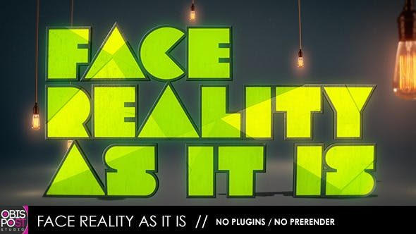 Videohive Face Reality As It Is 4804149