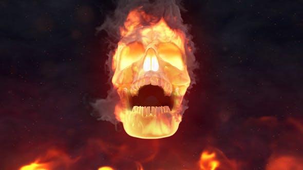 Videohive Fire Skull Logo Reveal 24509656