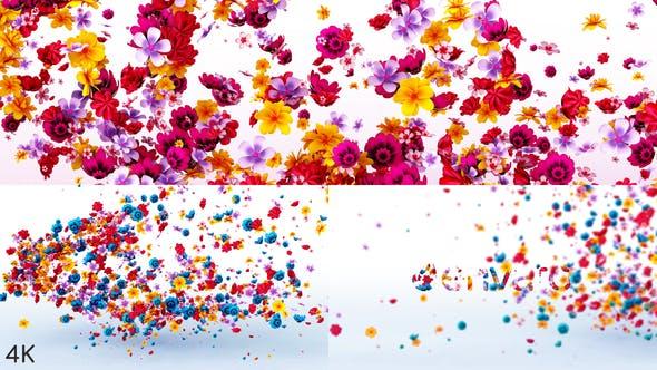 Videohive Flowers Logo Reveal 23972271