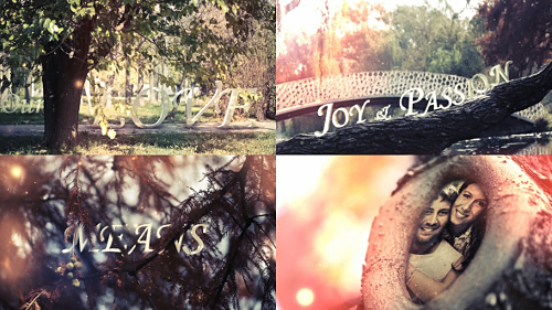 Videohive Hollow Love
