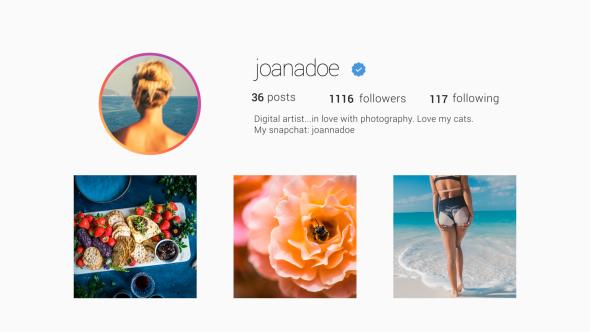 Videohive Instagram Promo 20219345