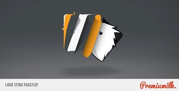 Videohive Logo Sting Page Flip 6608966