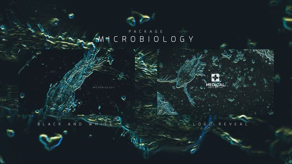 Videohive Microbiology Package 24386328