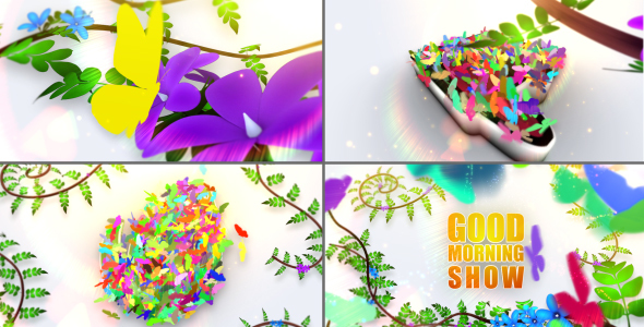 Videohive Morning Theme Package 14559418