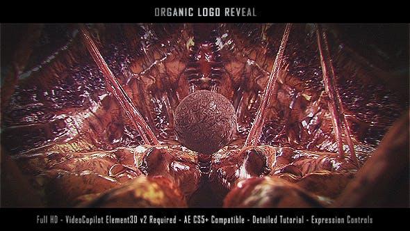 Videohive Organic Logo Reveal 19976013