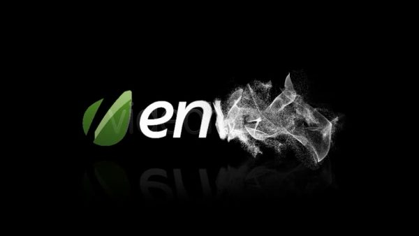Videohive Particle Reveal