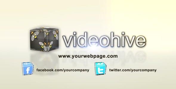 Videohive Real Estate Logo Reveal 1868865