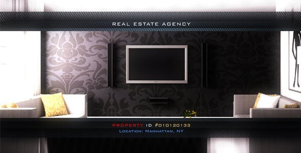 Videohive Real Estate Video Tours Gallery 3703962