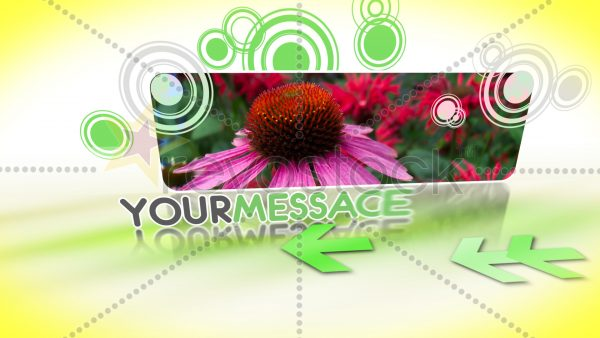 Videohive Smooth Moves.68825