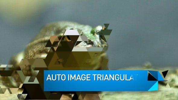 Videohive Triangulate Slideshow 3681335