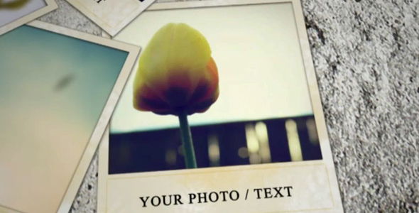 Videohive Wall and Photos