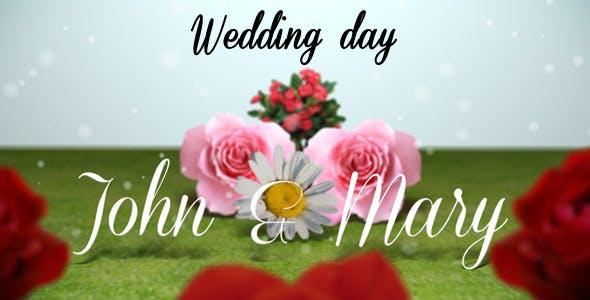 Videohive Wedding Day 3106418