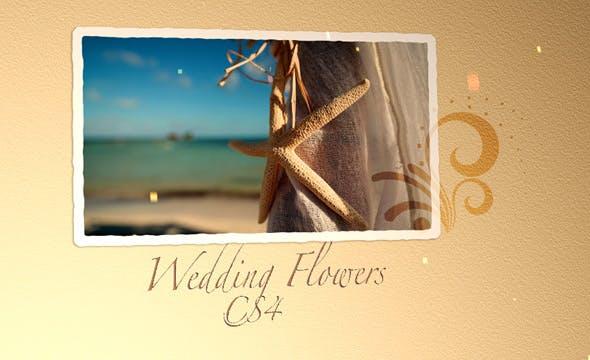 Videohive Wedding Flowers CS4 309125