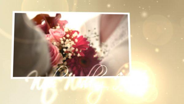 Videohive Wedding Hearts CS4.153475