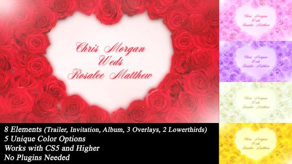 Videohive Wedding Roses 6812257