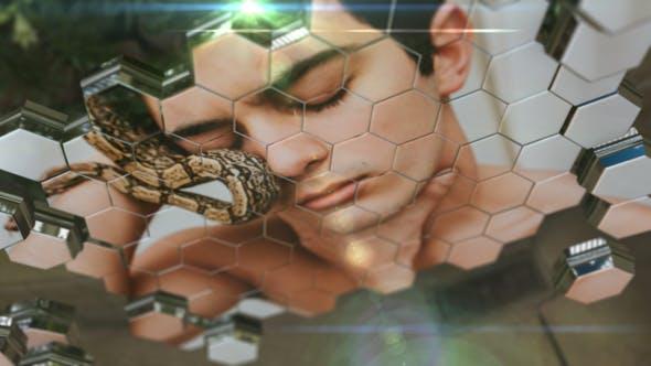 Videohive Honeycomb Slideshow 18709757
