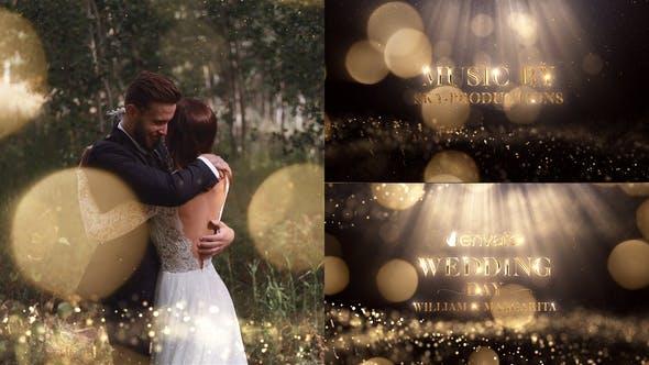 Videohive Wedding 22263676