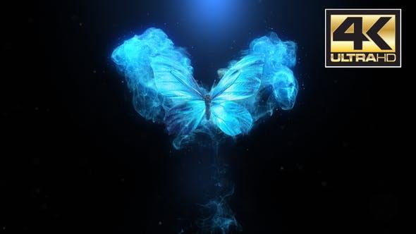 Videohive Flying Butterfly Logo Reveal 4k 22799595