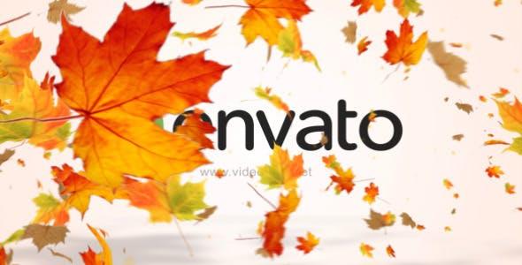 Videohive Maple Logo Reveal V2 12072636